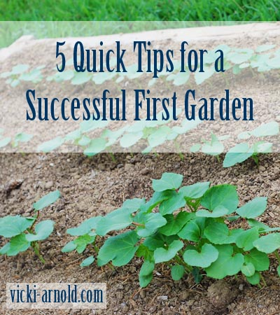 5 Quick Tips for a Successful First Garden