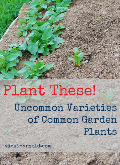 Plant these! Uncommon varieties of common garden plants