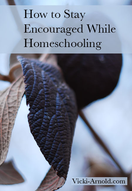 How to Stay Encouraged While Homeschooling