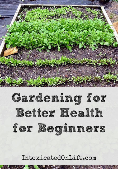Gardening for Better Health for Beginners on Intoxicated on Life