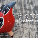 A fun bird unit study for preschool age kids!