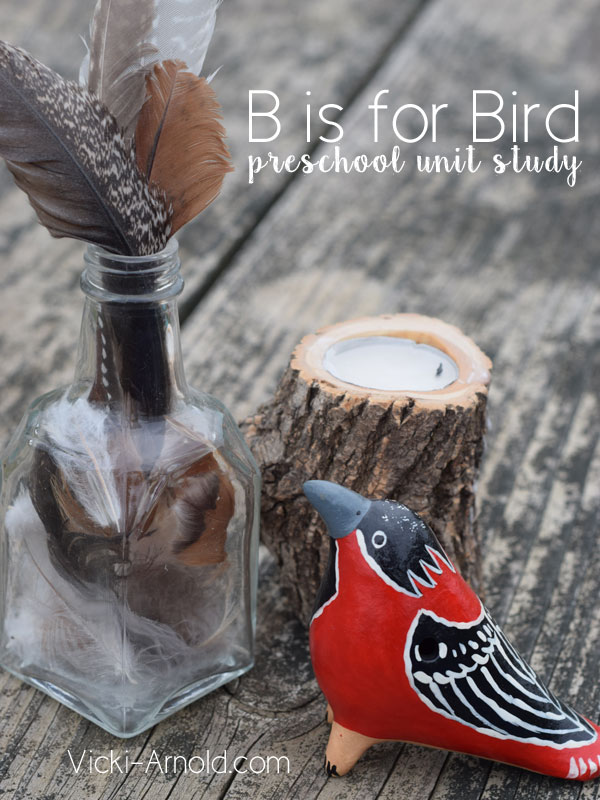 Bird Unit Study for Preschool